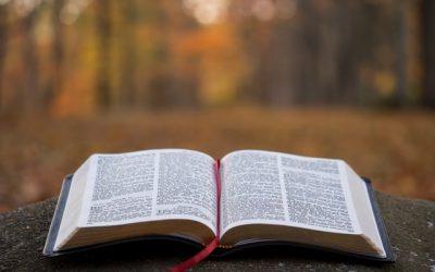 ¿Tiene contradicciones la Bíblia?