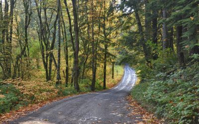 ¿Pueden haber muchos caminos que llevan a Dios?