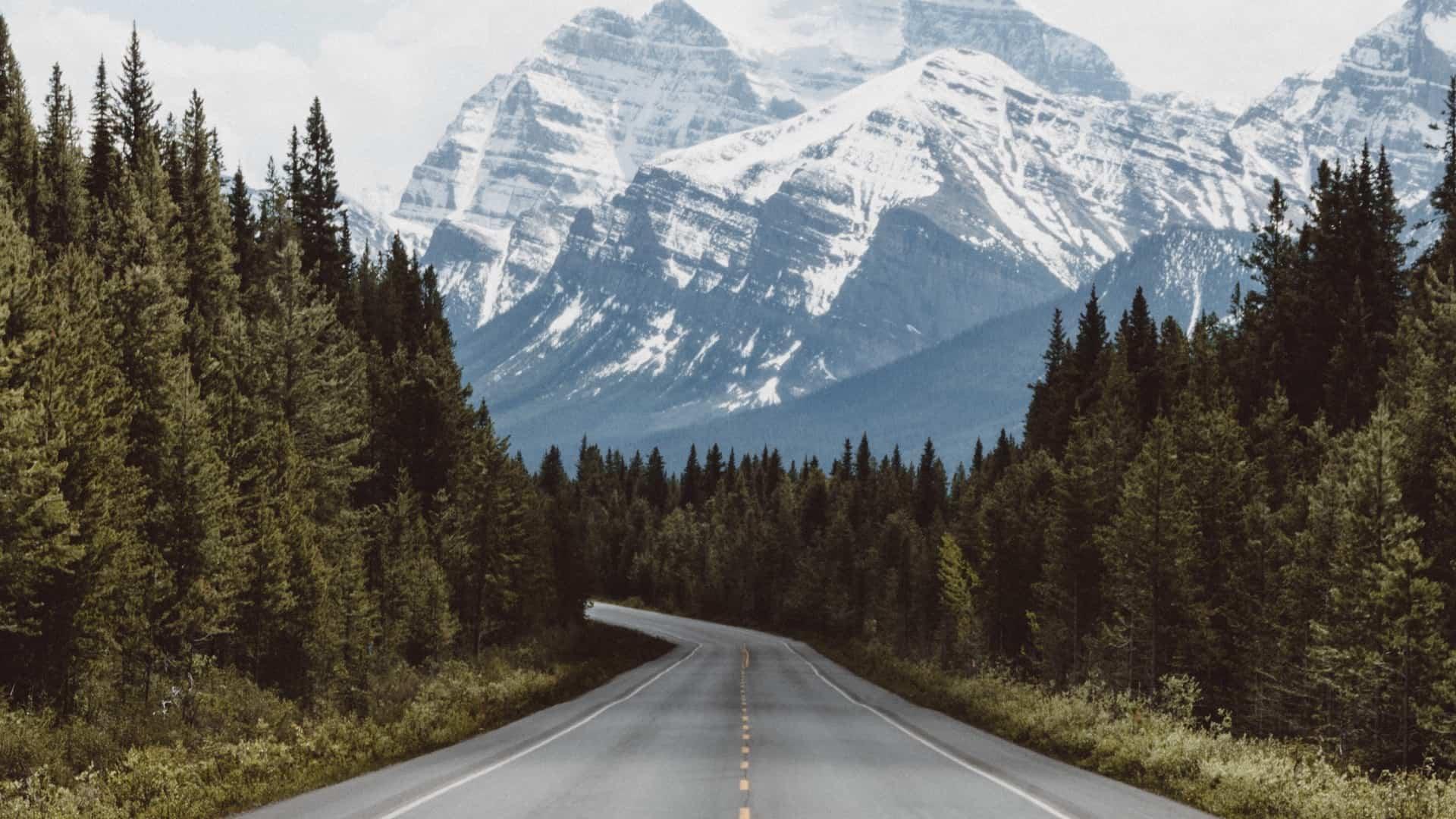 Carretera con árboles y montañas
