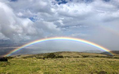 ¿Qué significa el arcoíris?