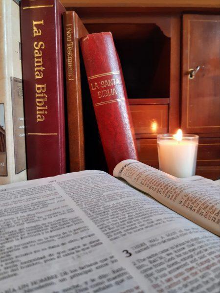 Resultados leer la Biblia